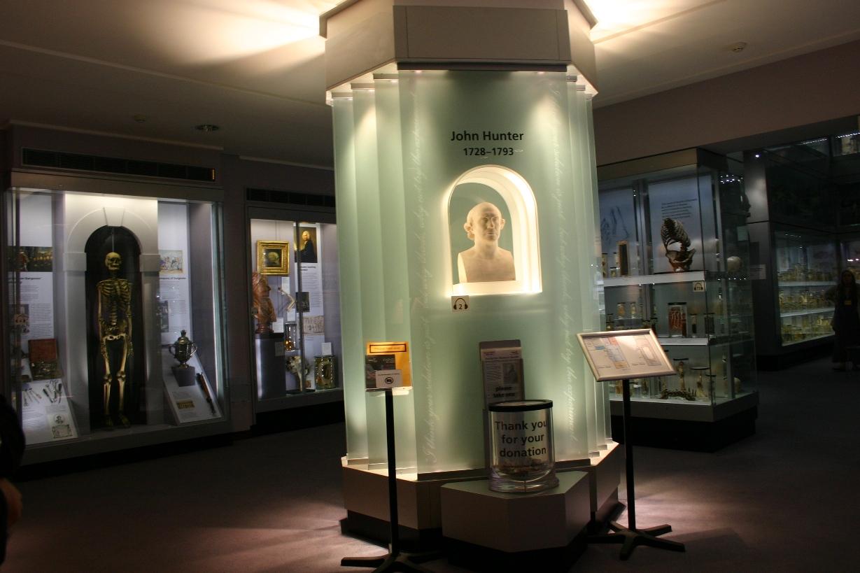 Hunterian Museum - Himetop
