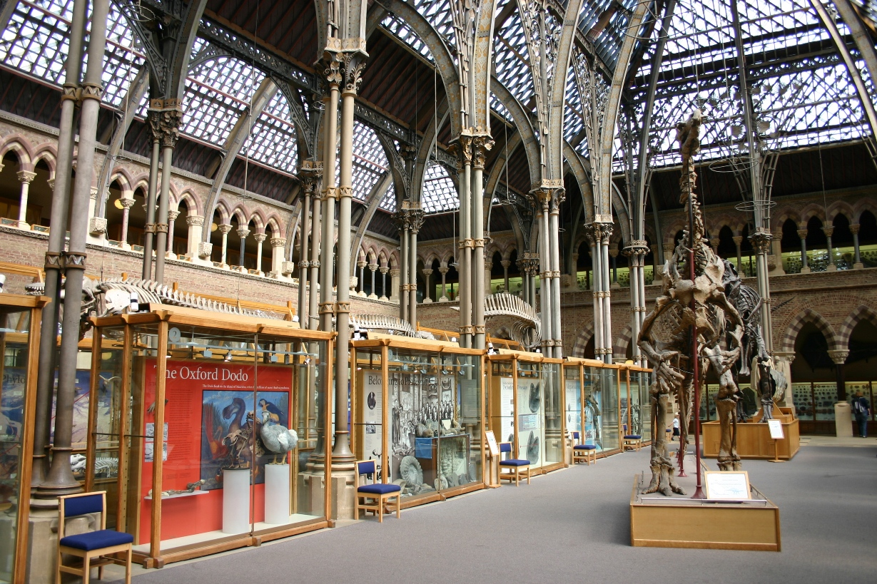 Oxford University Museum Of Natural History Opening Times