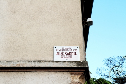 Alexis%20Carrel%27s%20birthplace%20-%2004.JPG