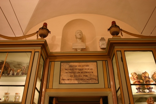 Antonio%20Scarpa%27s%20bust%20and%20memorial%20tablet%2C%20Museo%20per%20la%20Storia%20dell%27Universit%C3%A0%2C%20Pavia%20-%2001.JPG