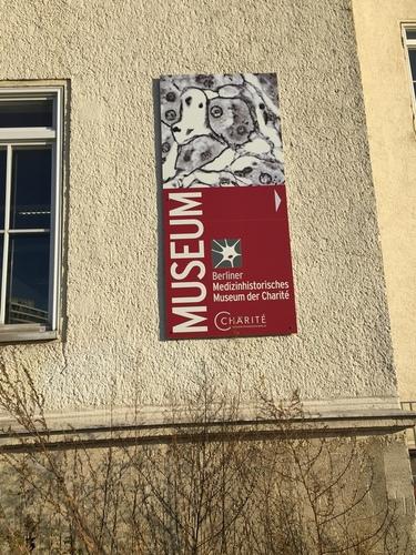 Berliner%20Medizinhistorisches%20Museum%20der%20Charit%C3%A9%2C%20Berlin%20-%2002.jpg