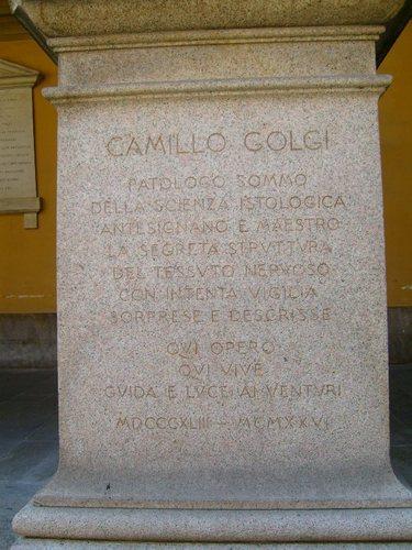 Camillo%20Golgi%27s%20statue%202%2C%20Pavia%2C%20Italy.JPG