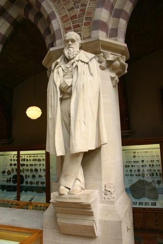 Charles%20Darwin%27s%20statue%2C%20Oxford%20University%20Museum%20of%20Natural%20History%2C%20Oxford%2C%20UK%20%284%29.JPG