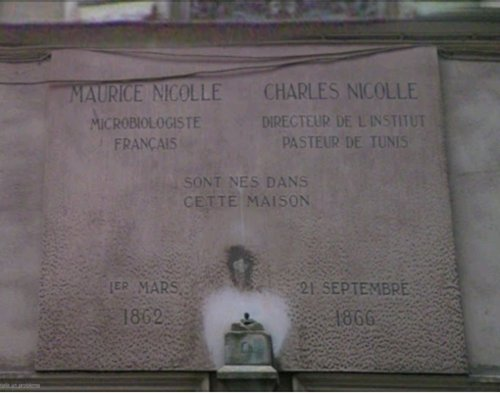 Charles%20Nicolle%27s%20birthplace%2C%20Rouen%20-%203.png