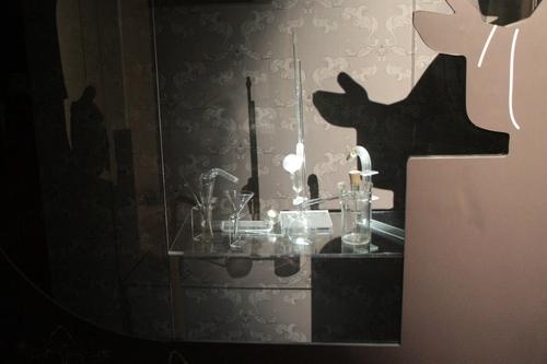 Claude%20Bernard%27s%20home-museum%2C%20Saint-Julien%20-%2006.JPG