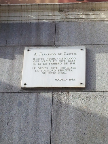 Fernando%20de%20Castro%27s%20birthplace%2C%20Madrid%20%20-%2003.jpg