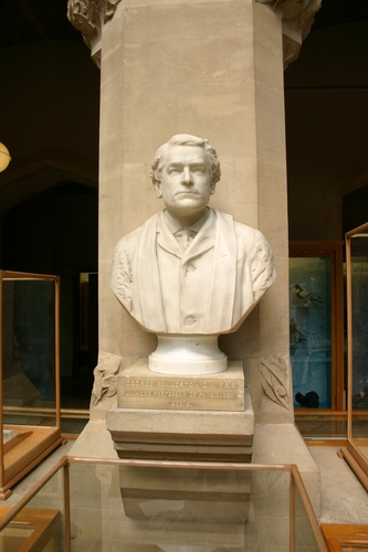 George%20Rolleston%27s%20bust%2C%20Oxford%20University%20Museum%20of%20Natural%20History%2C%20Oxford%20%282%29.JPG