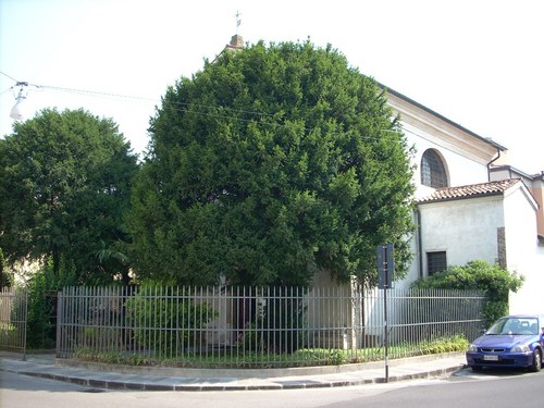 GBMorgagni%27s%20tomb%2C%20Church%20of%20San%20Massimo%2C%20Padua%20-%2001.JPG