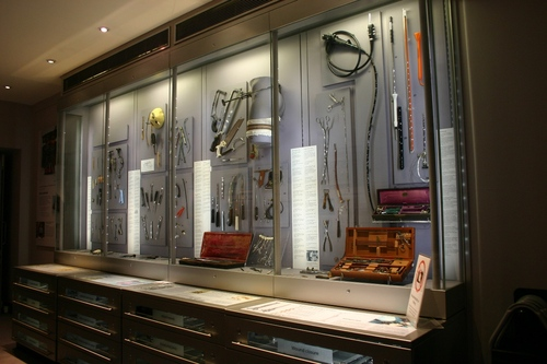 Hunterian%20Museum%2C%20Royal%20College%20of%20Surgeons%2C%20London%20-%2006.JPG