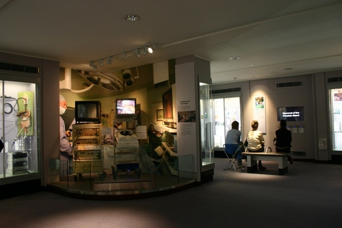 Hunterian%20Museum%2C%20Royal%20College%20of%20Surgeons%2C%20London%20-%2007.JPG