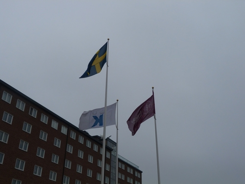 Karolinska%20Institutet%20Solna%20Campus%2C%20Stockholm%20-%2008.JPG