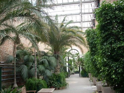 Botanical%20Garden%2C%20Leuven%20-%2004.JPG