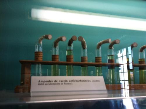 Pasteur%27s%20home-museum%2C%20Institut%20Pasteur%2C%20Paris%20by%20Rosa%20Longo%20%287%29.JPG