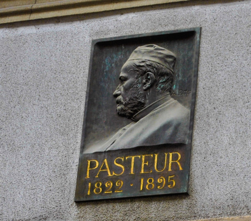 Louis%20Pasteur%27s%20memorial%20tablet%2C%20Strasbourg%20by%20Virginia%20Gregorio%20%285%29.jpg