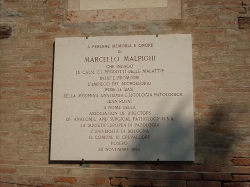 Marcello%20Malpighi%27s%20home%2C%20Crevalcore%2C%20Italy%20-%2005.JPG