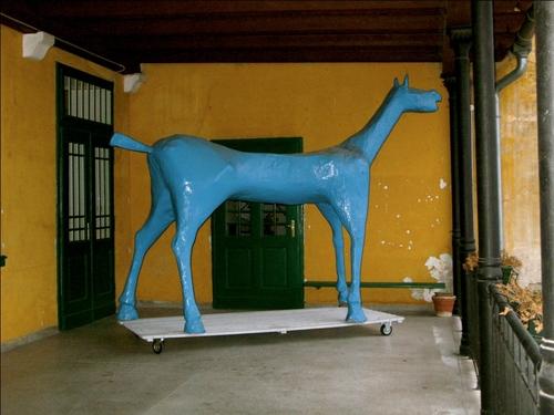 cavallo%203.JPG