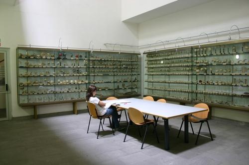 Museo%20Anatomico%2C%20Siena%2C%20Italy%20-%2002.JPG
