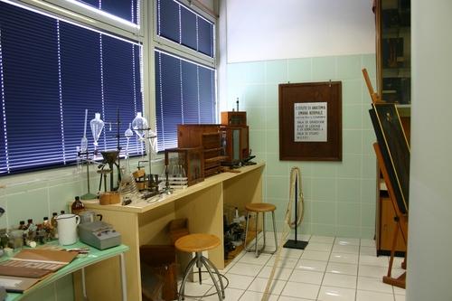 Museo%20Anatomico%2C%20Siena%2C%20Italy%20-%2009.JPG