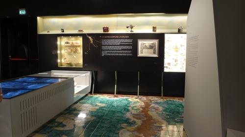Museo%20dell%E2%80%99Istituto%20Superiore%20di%20Sanit%C3%A0-10.jpg