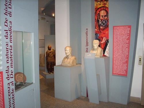 Museo%20di%20Storia%20della%20Medicina%2C%20La%20Sapienza%2C%20Rome%20-%2008.JPG