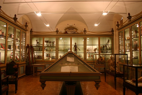 Museo%20per%20la%20Storia%20dell%27Universit%C3%A0%2C%20Pavia%20-%2004.JPG
