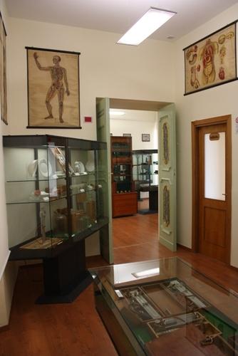 Museo%20Roberto%20Papi%205