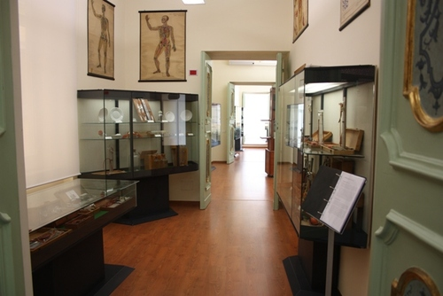 Museo%20Roberto%20Papi%206