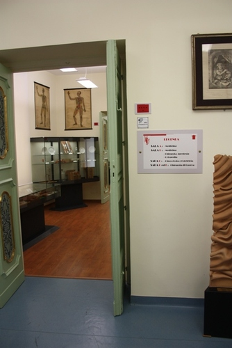 Museo%20Roberto%20Papi%207