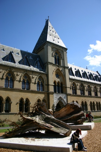 Oxford%20University%20Museum%20of%20Natural%20History%2C%20Oxford%2C%20UK%20-%2002.JPG