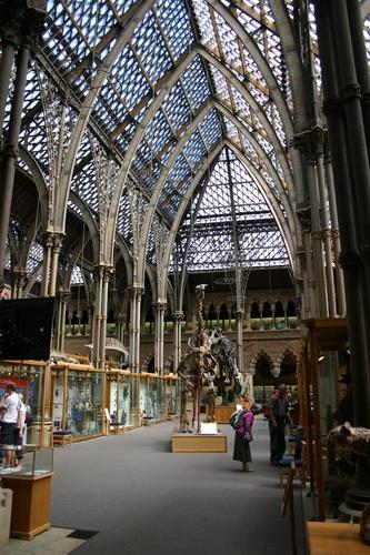 Oxford%20University%20Museum%20of%20Natural%20History%2C%20Oxford%2C%20UK%20-%2005.JPG