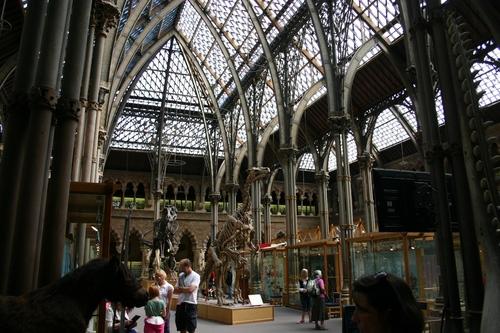 Oxford%20University%20Museum%20of%20Natural%20History%2C%20Oxford%2C%20UK%20-%2006.JPG