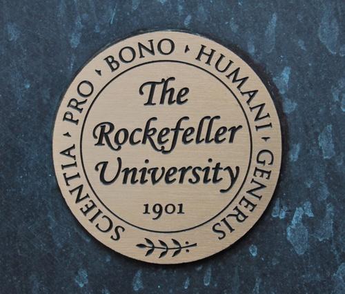 Rockefeller%20Unievrsity%2C%20New%20York%20-%2004.JPG